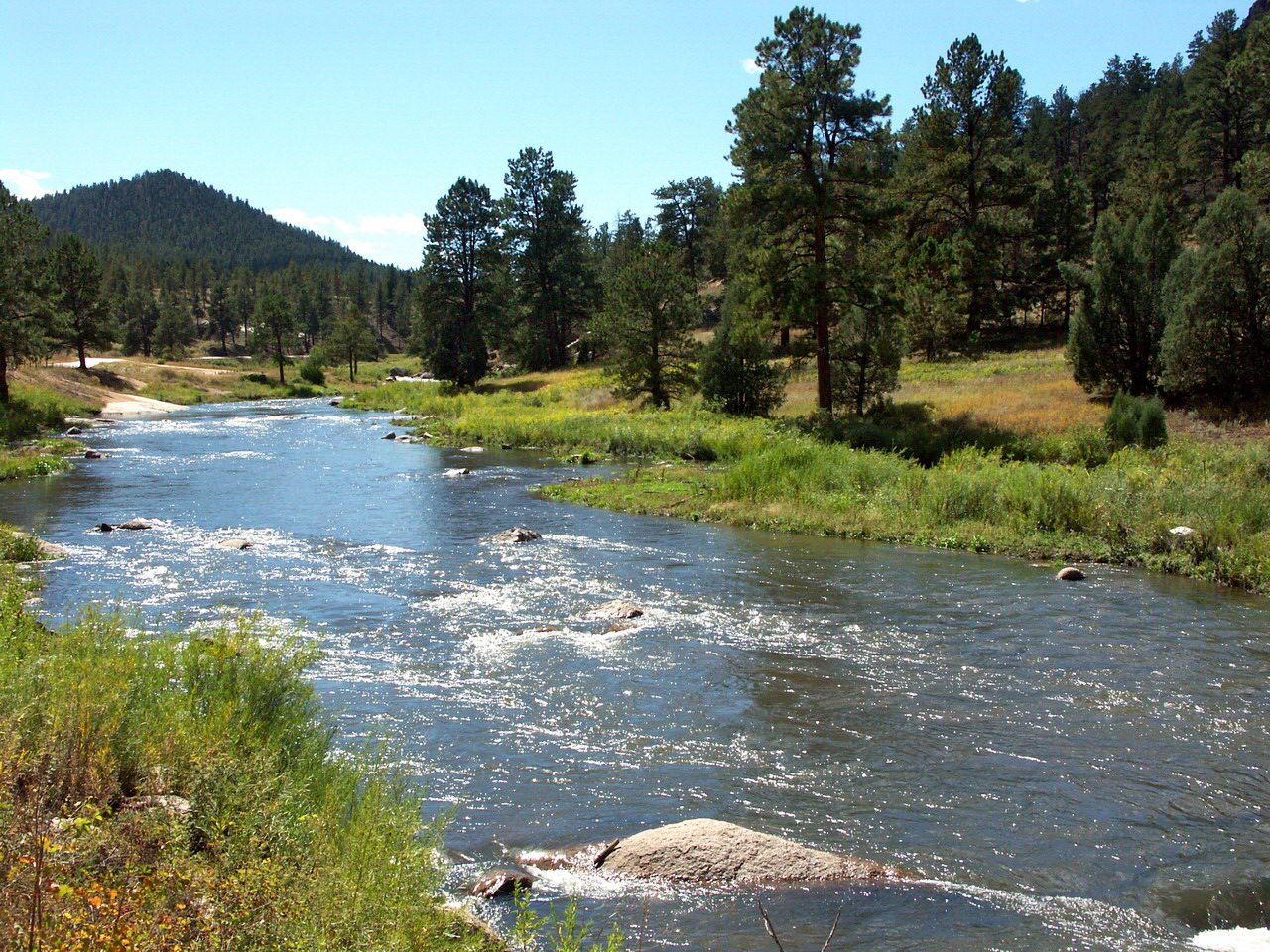 The best places to fly fish in colorado fly fishing rod for South platte river fishing