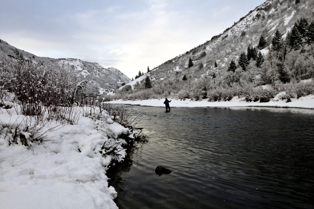 fly fishing on the provo river Utah